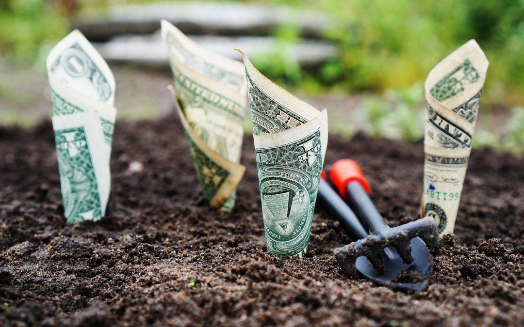 A pénzbeli és nem pénzbeli vagyoni hozzájárulás